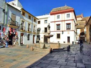 PlazaPotro