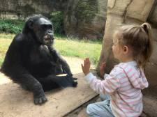 Leyla Hannover Hayvanat Bahçesinde